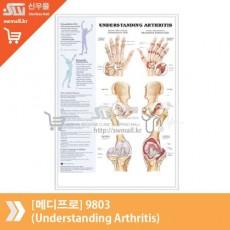[메디프로]9803(Understanding Arthritis)