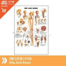 [메디프로]9780(Hip And Knee)