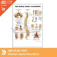 [메디프로]9907(Human Spine Disorders)