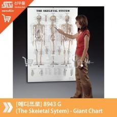 [메디프로]8943 G (The Skeletal Sytem) - Giant Chart