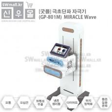 [굿플] 극초단파 자극기 GP-801M